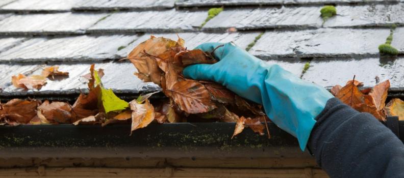 ¿Qué importancia tiene un correcto mantenimiento de los canalones?