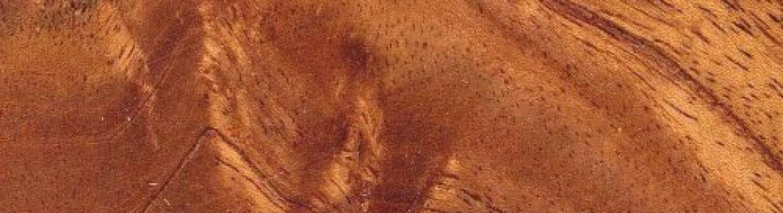 Trabajos de carpinter a calidad de los materiales - Materiales de carpinteria ...